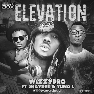 WizzyPro - Elevation (feat. Shaydee & Yung L)