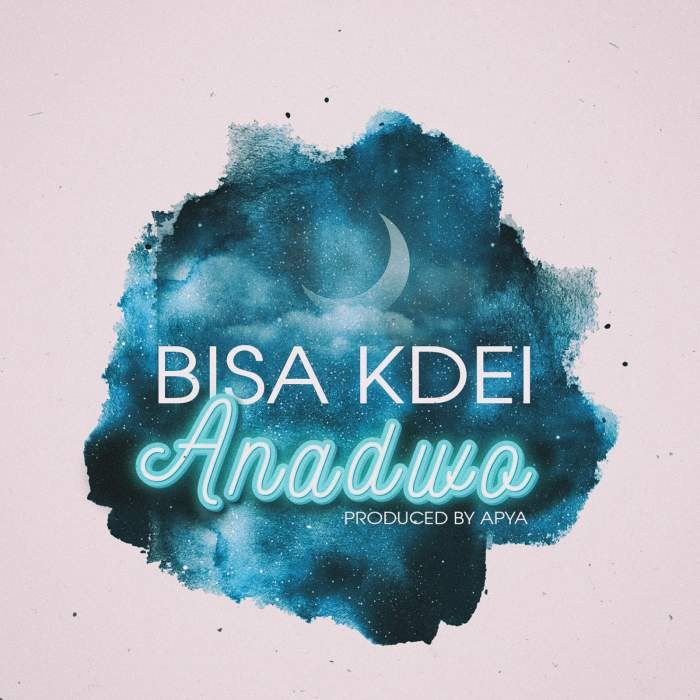 Bisa Kdei - Anadwo