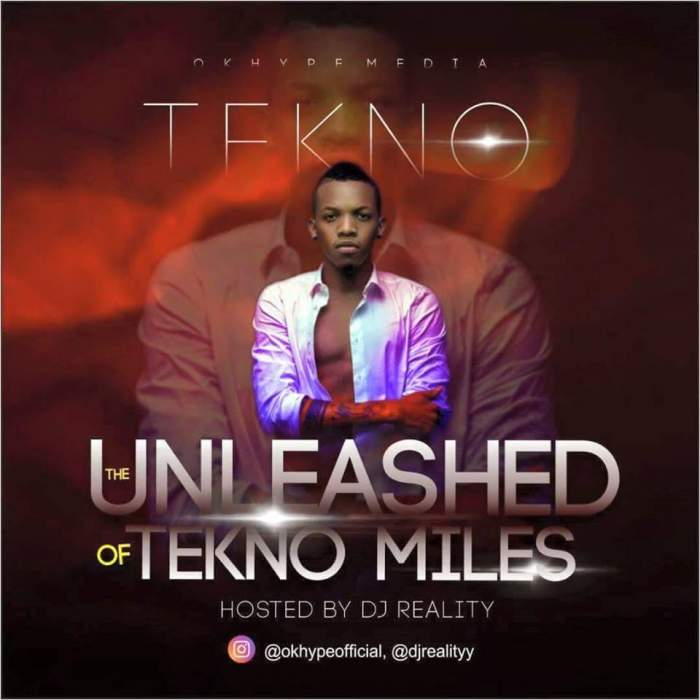 DJ Reality - The Unleashed (Best) of Tekno Miles
