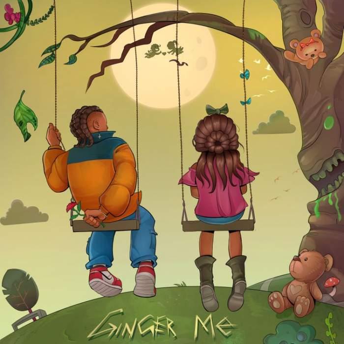 Lyrics: Rema - Ginger Me