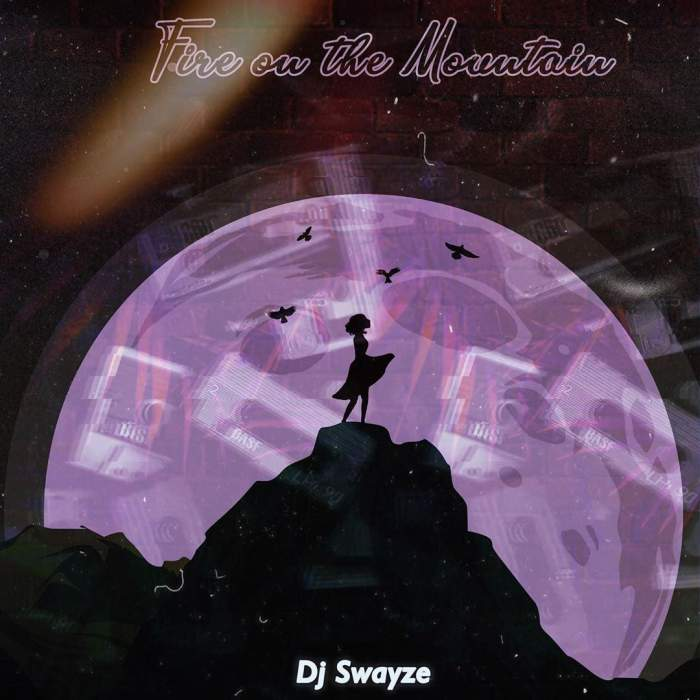 DJ Swayze - Fire On the Mountain Mix (PDM23)