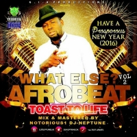 Notorious1 DJ Neptune - What Else? Arobeat Mix (Vol. 2)