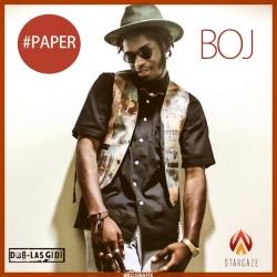 BOJ - Paper