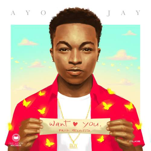 Ayo Jay - Want You