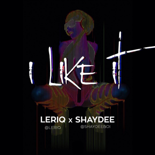 Shaydee & LeriQ - I Like It