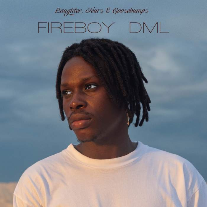 Album: Fireboy DML – Laughter, Tears & Goosebumps