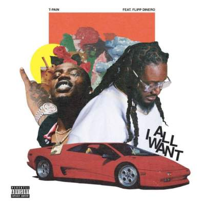 Music: T-Pain - All I Want (feat. Flipp Dinero)