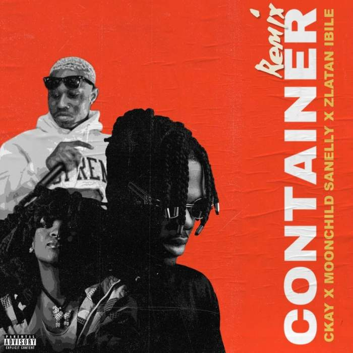 CKay - Container (Remix) (feat. Moonchild Sanelly & Zlatan)