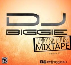 DJ Biggie - Funky SA House Mixtape (Vol. 2)