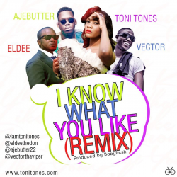 Toni Tones - I Know What You Like (Remix) (ft. Vector, Eldee & Ajebutter22)
