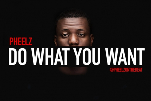 Pheelz - Do What You Want