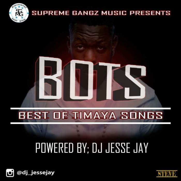 DJ Jesse Jay - Best of Timaya Songs (Part 2)
