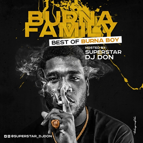 DJ Don - Best of Burna Boy Mix