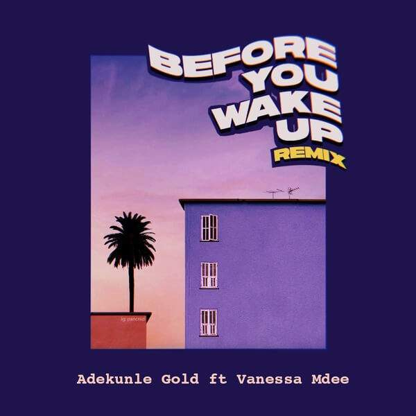 Adekunle Gold - Before You Wake Up (Remix) (feat. Vanessa Mdee)
