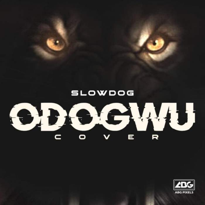Slowdog - Odogwu (Cover)
