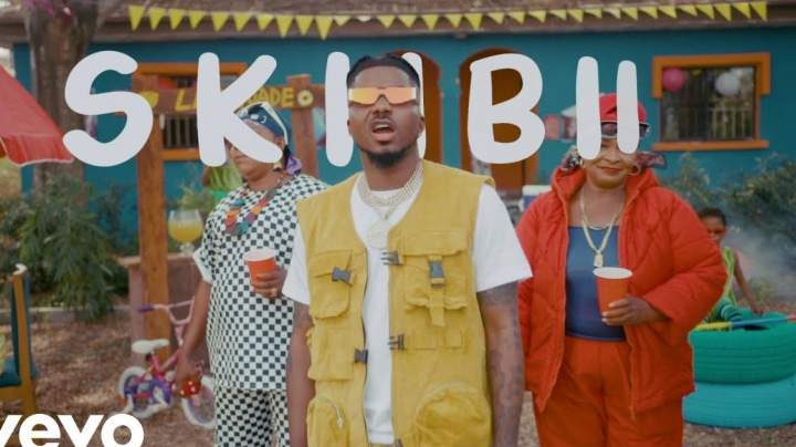 Skiibii - Are You Vhere?