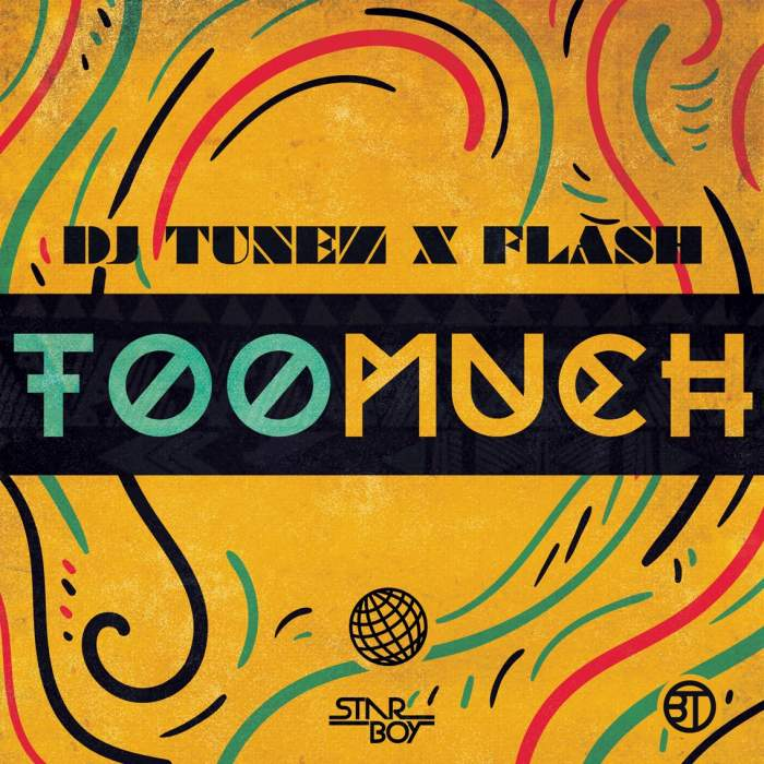 DJ Tunez & Flash - Too Much