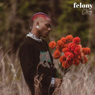 Music: CKay - Felony