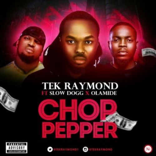 Tek Raymond - Chop Pepper (feat. Slow Dogg & Olamide)