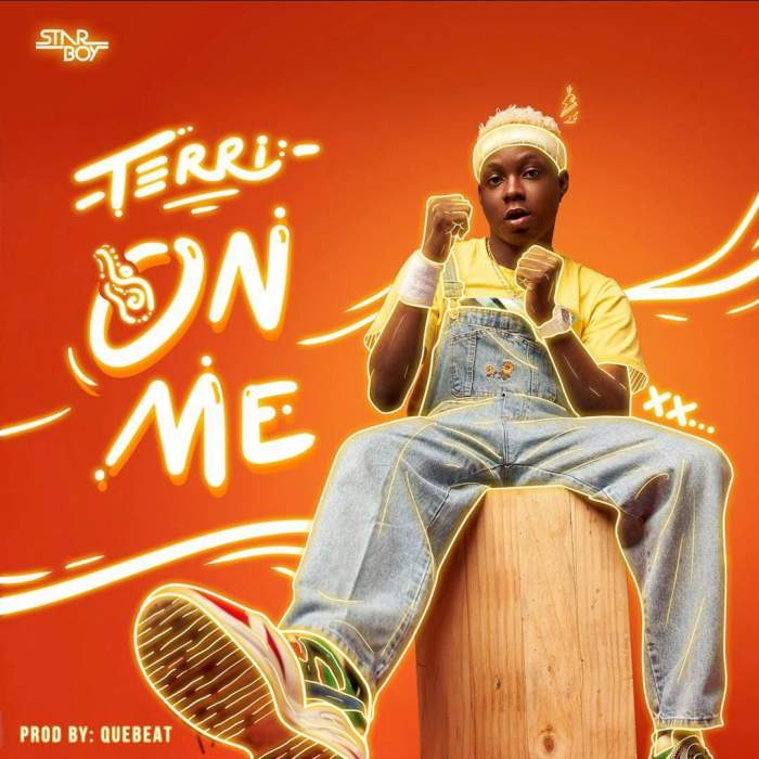 Terri - On Me (Instrumentals)