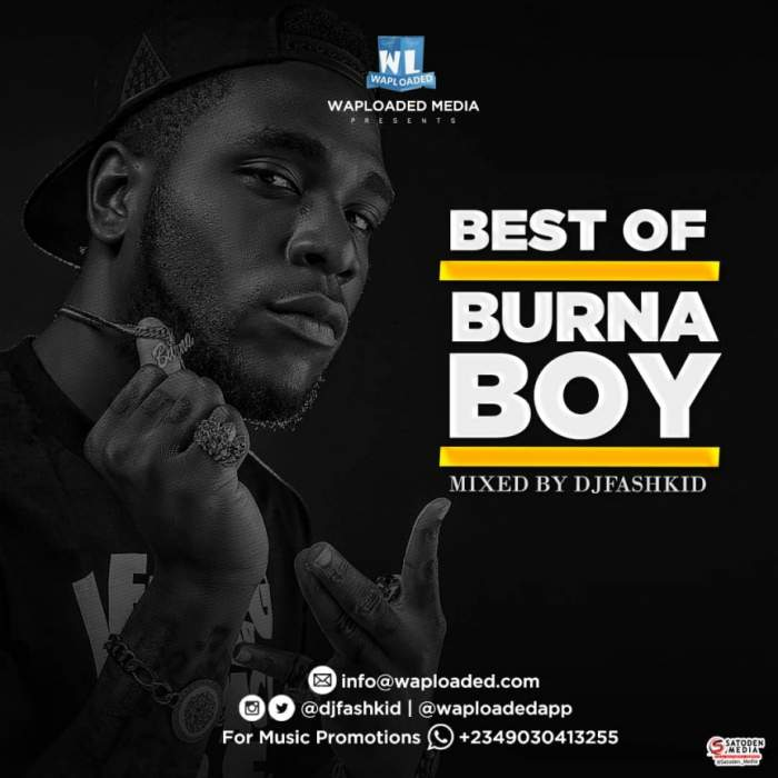 DJ Fashkid - Best of Burna Boy Mix