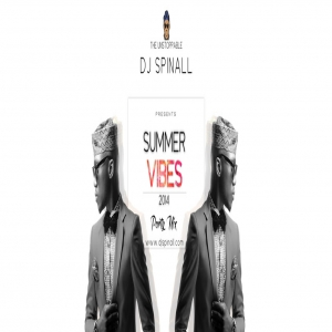 DJ Spinall - Summer Vibes Party Mix