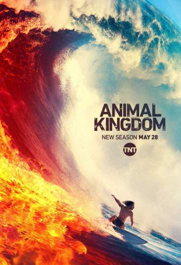 New Episode: Animal Kingdom Season 4 Episode 8 - Ambo