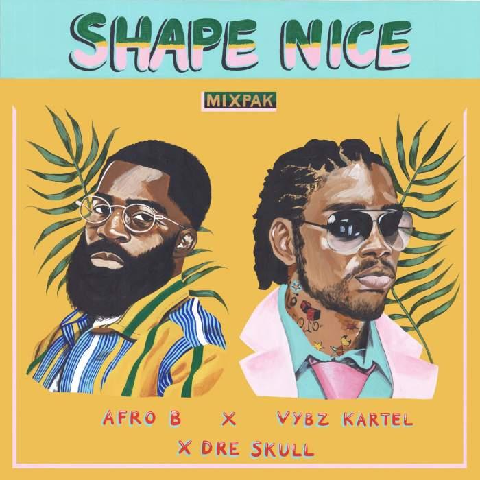Afro-B, Vybz Kartel & Dre Skull - Shape Nice