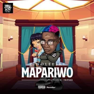Music: Zinoleesky - Mapariwo