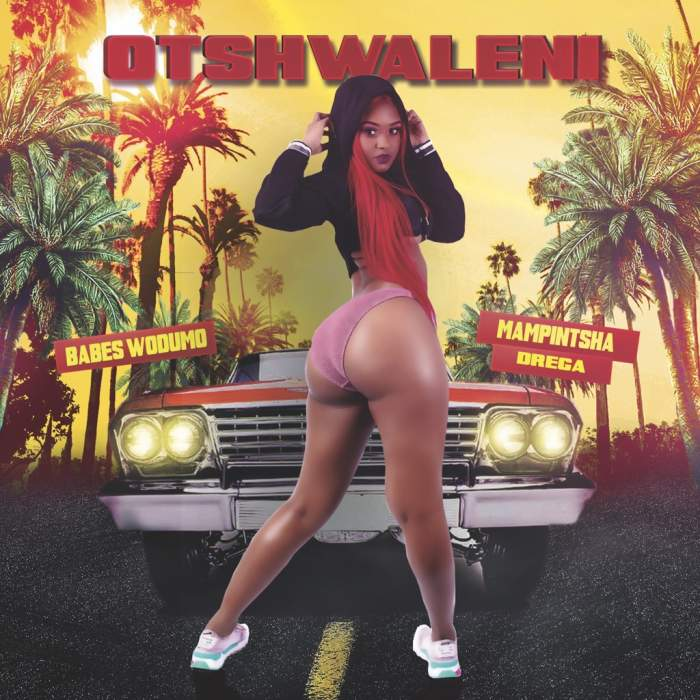Babes Wodumo - Otshwaleni (feat. Mampintsha & Drega)