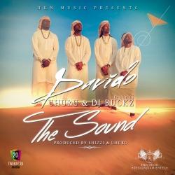 Davido - The Sound (ft. Uhuru & DJ Buckz)