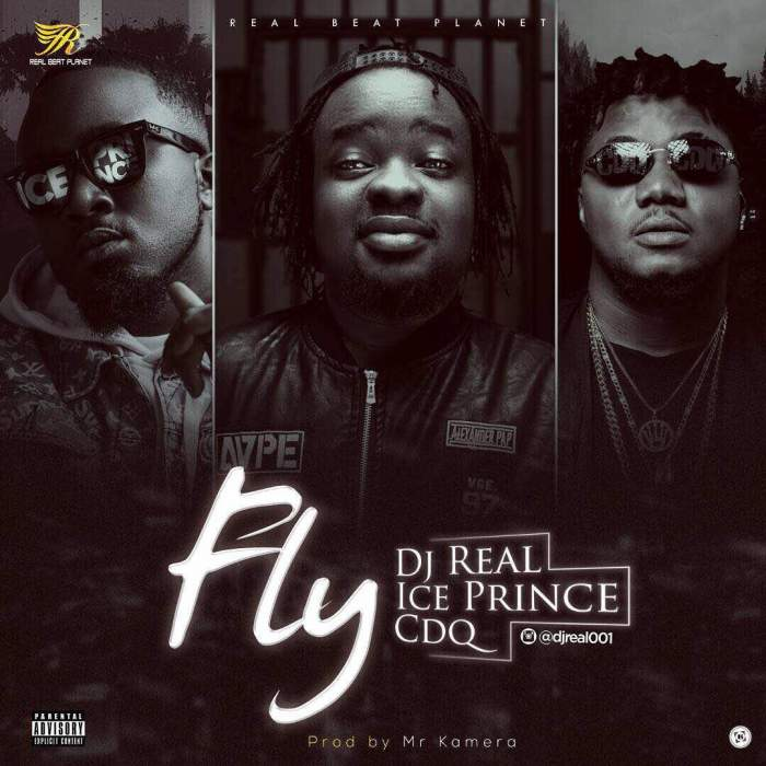 DJ Real - Fly (feat. Ice Prince & CDQ)