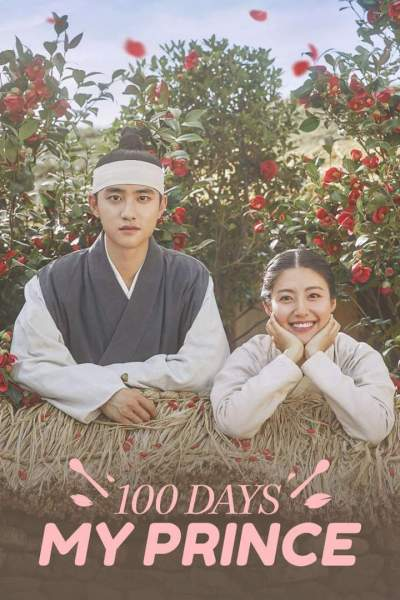 Series Download: 100 Days My Prince (Complete Season 1) [Korean]