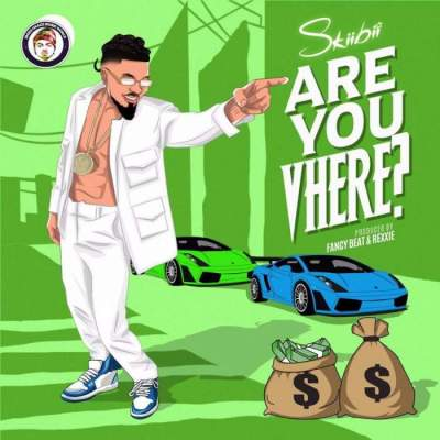 Music: Skiibii - Are You Vhere