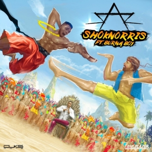Sarz - Shoknorris (feat. Burna Boy)