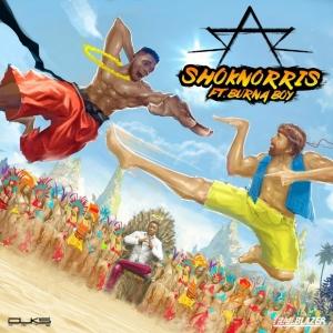 Sarz - Shoknorris (ft. Burna Boy)