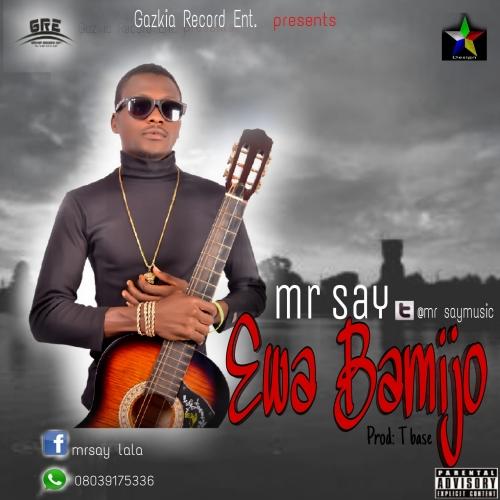 Mr Say - Ewa Bamijo