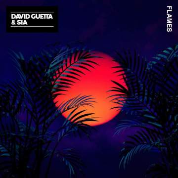 Music: David Guetta & Sia - Flames