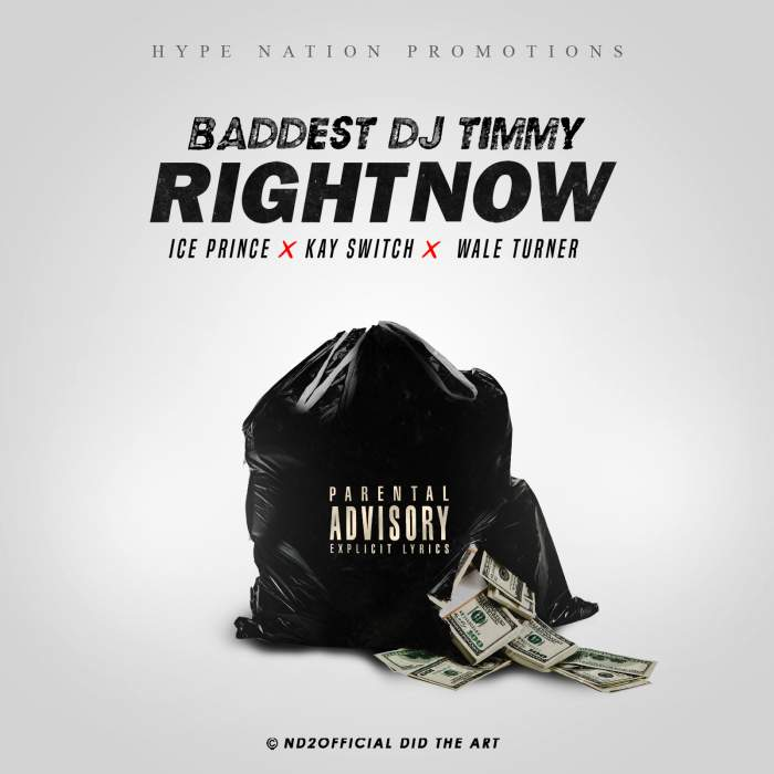 DJ Timmy - Right Now (feat. Wale Turner, Ice Prince & Kayswitch)