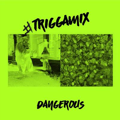 Music: Trey Songz - Dangerous (Remix) [Prod. by Hitmaka]