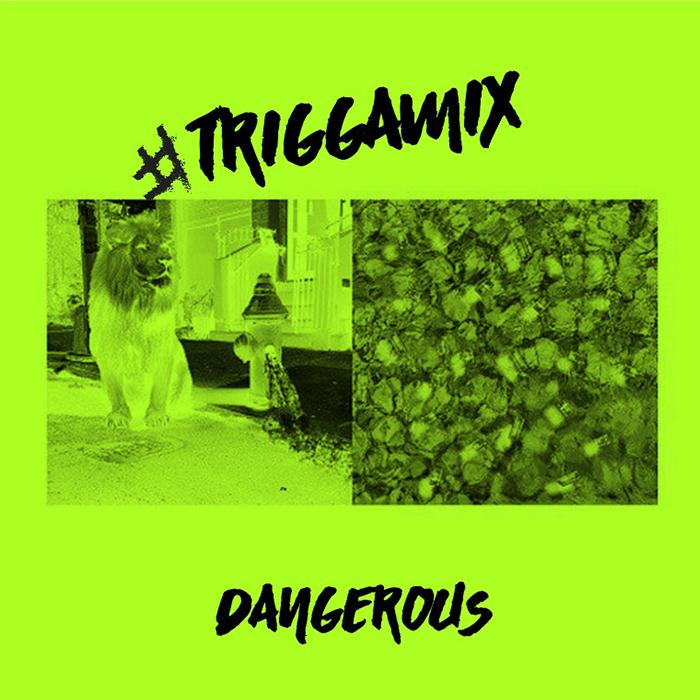 Trey Songz - Dangerous (Remix)