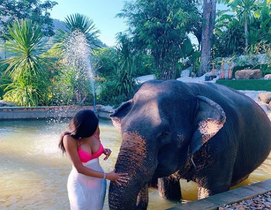 Chika Ike Flaunts Bikini Body As She Poses With An Elephant In Thailand
