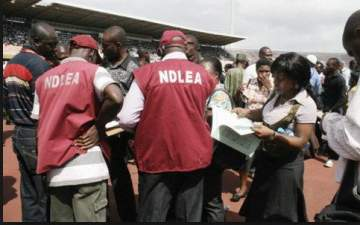 NDLEA Arrests Mother With 40kg Of Cannabis (Details)