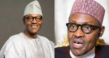 Rodents are keeping Buhari out of his office - Presidency