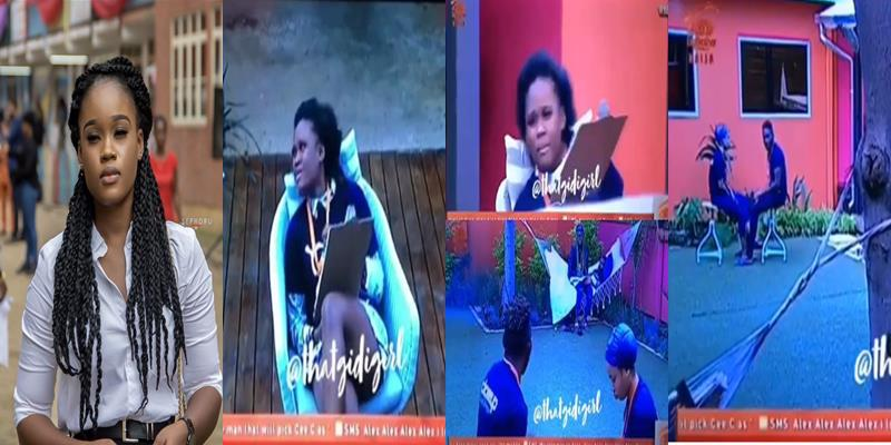 Bbnaija Alex And Cee C Engage In Dirty Fight Viewers React Videos Tile 4