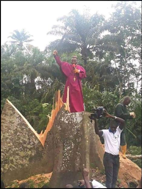 Priest Cuts Down Tree