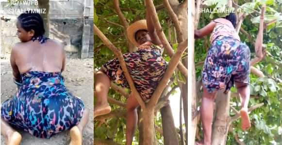 Slay Queen Dangerously Climbs Tree To Twerk To Davidos New Song Video
