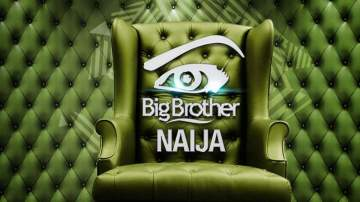 Ex-BBNaija housemate under fire for sharing nude photo online