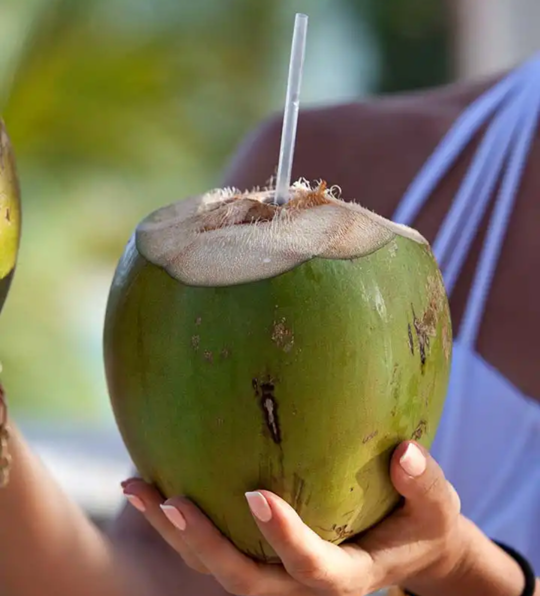 Coconut Water Photo Credit Pinterest