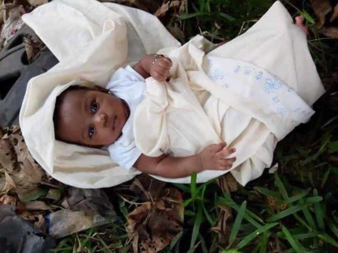 Abandoned Baby In A Bush2